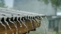 Proč je třeba zadržovat a zpracovávat vodu na svém pozemku? Co říká zákon?